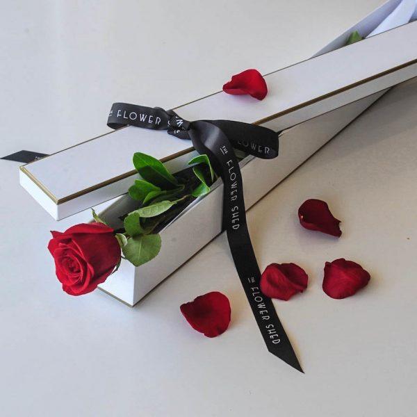 SINGLE ROSE GIFT BOX